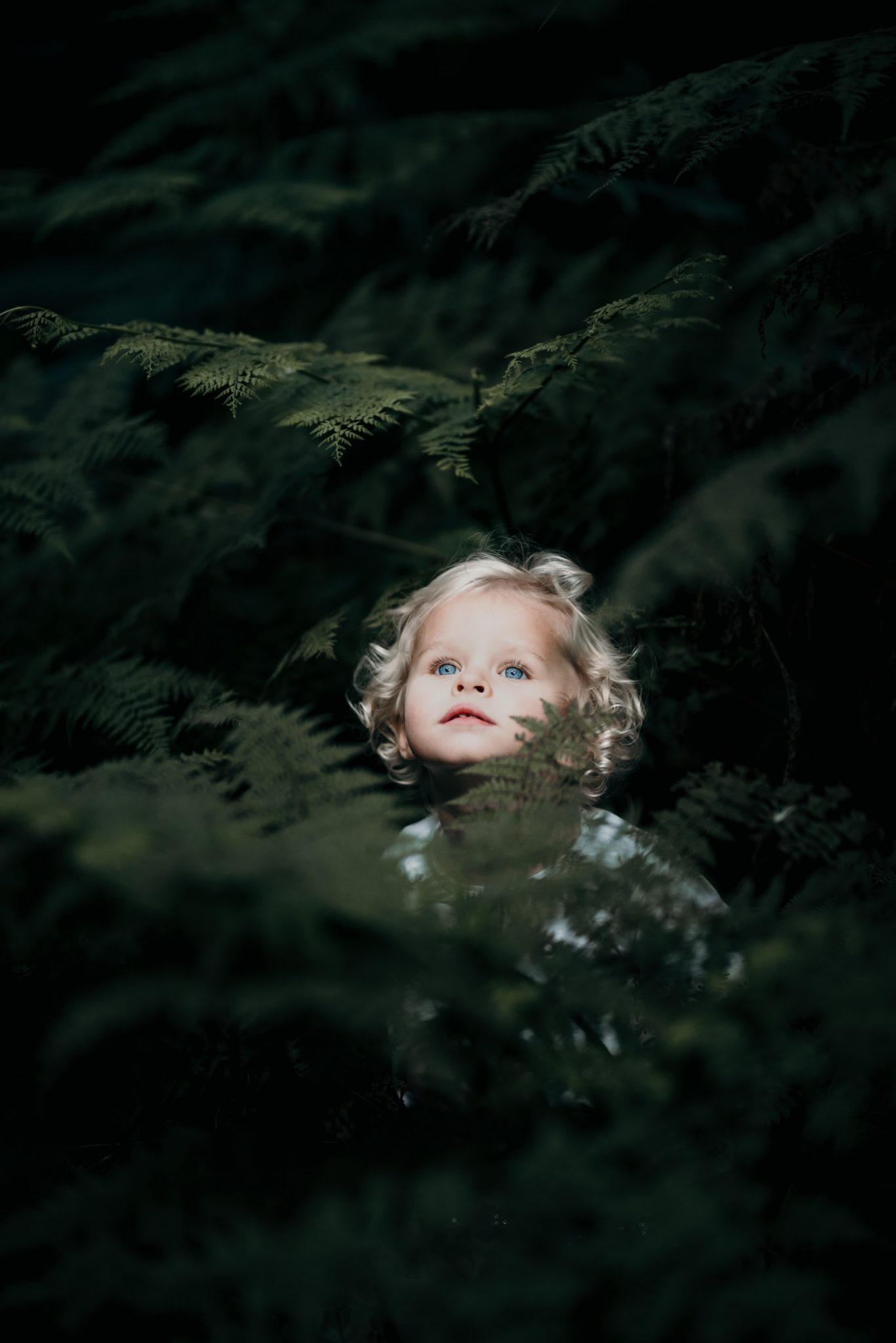 Plettenberg Bay Family Photographer, Sharyn Hodges