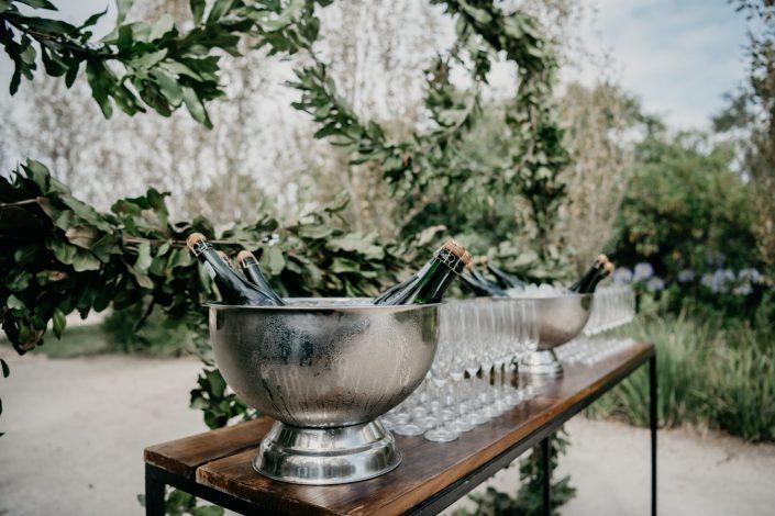 Plettenberg Bay Wedding Vendors